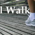 "Below is some high level information about our Angel Walk and we have a YouTube link regarding our ""Walk for an Angel"" – held on Sunday – April 11, 2010. […]"